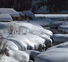 Winter in Wyoming by algill