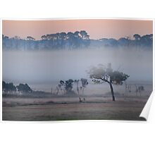 Dawn with Mist along the Freeway Poster