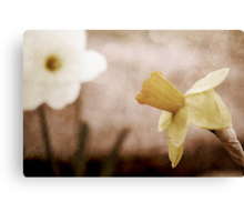 If These Flowers Could Speak Canvas Print