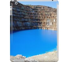 Mary Kathleen  iPad Case/Skin