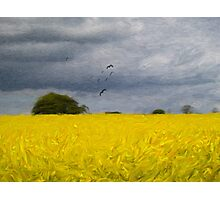 Rapeseed Fields - Impressionist - Oil Painting Effect Photographic Print