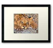Do I have to grow up...? Framed Print