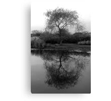 Autumn's Reflection Canvas Print
