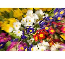 FLORAL ZOOM Photographic Print