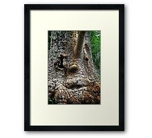 The Ogre Framed Print