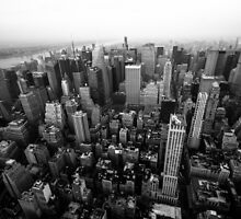 Above NYC from the Empire State Building by Steven Dworak