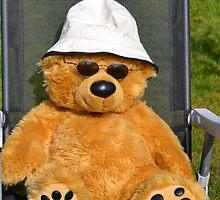 One Cool Bear by lynn carter
