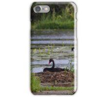Black Swan Nesting iPhone Case/Skin