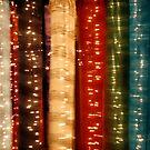 Silk Lights by friartuck