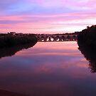 Cordoba Roman Bridge at Sunset by Sue Ballyn