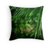 Raindrops 4 Throw Pillow