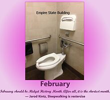 Toilets of New York 2015 February - Empire State Building  by newbs