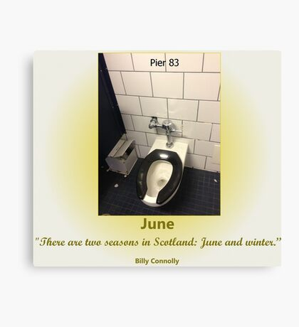 Toilets of New York 2015 June - Pier 83 Canvas Print
