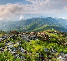 Roan Highlands Southern Appalachian Grassy Balds by MarkVanDyke