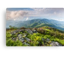 Roan Highlands Southern Appalachian Grassy Balds Canvas Print