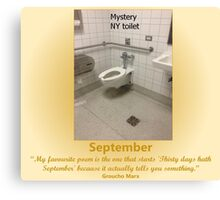 Toilets of New York 2015 September - Mystery Canvas Print