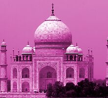 Taj Mahal - India by aidan  moran