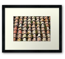 moss growing on old roof tiles Framed Print