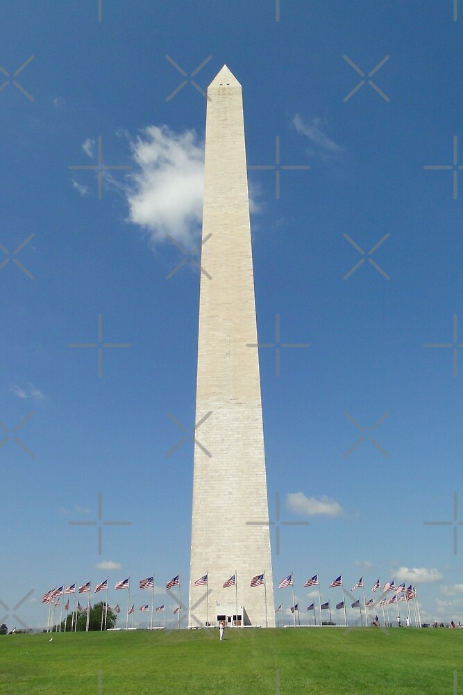 The Washington Monument by Barrie Woodward