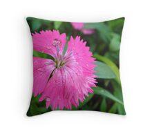 Gentle Drops On Pink Petals  Throw Pillow