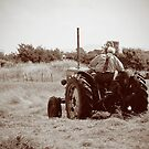 Mid Mount Mowing by Barrie Woodward