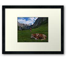 Konigsee Cows Framed Print