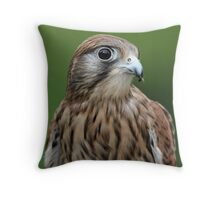 Don't you love my eye lashes Throw Pillow