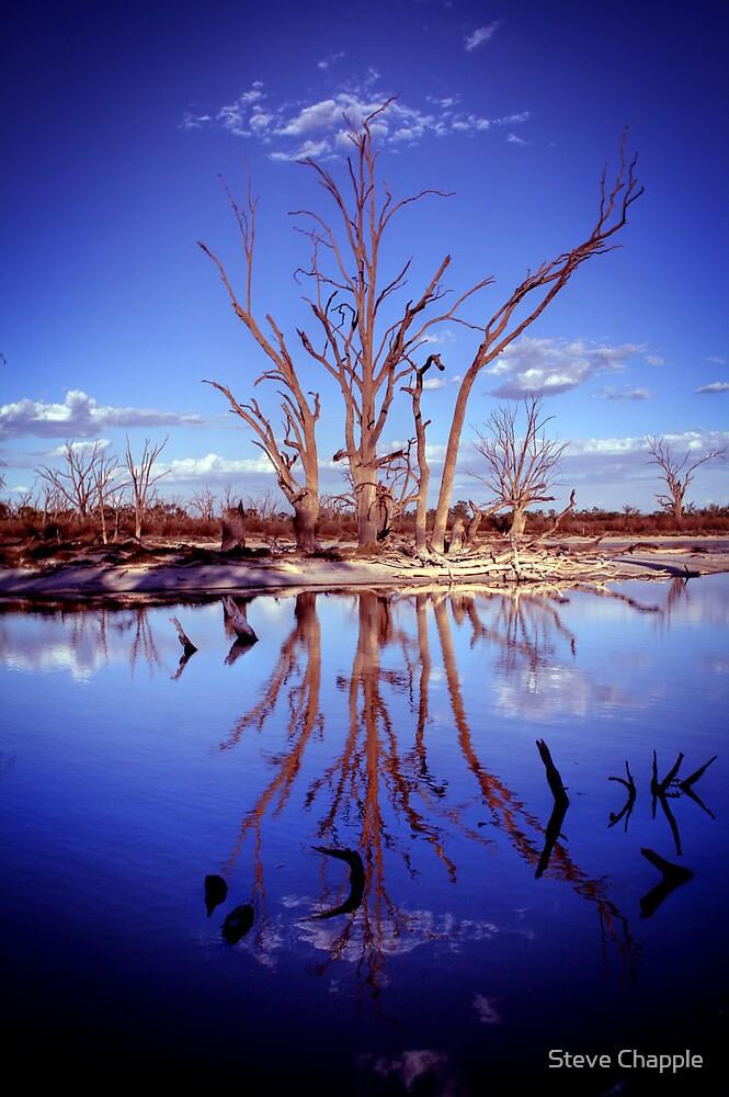 The Blues... by Steve Chapple