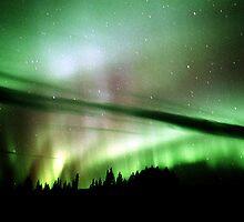 Auroras over the Alaska Highway by peaceofthenorth