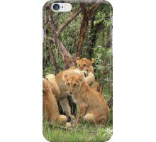 Masai Mara Lion Cubs iPhone Case/Skin