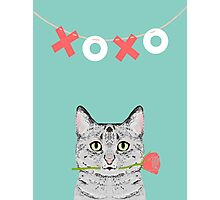 Cat love valentine gift for cat lady cat person gifts cell phone cases with cats Photographic Print