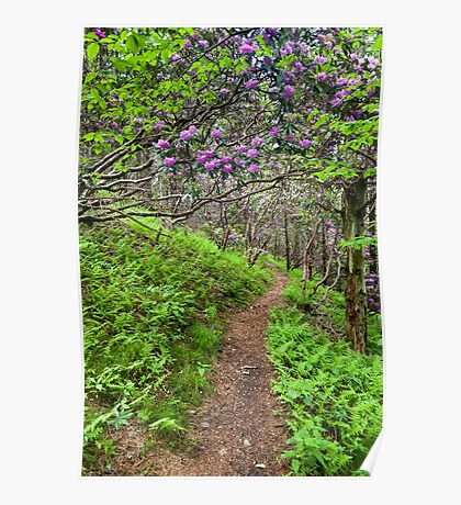 Nature's Garden Trail - North Carolina Catawba Rhododendron Poster