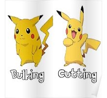 Bulking and cutting Poster