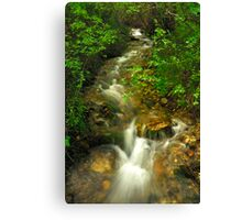 Mountain Ribbon Canvas Print