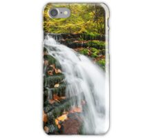 Autumn Foliage and Waterfall at Ricketts Glen State Park Pennsylvania iPhone Case/Skin