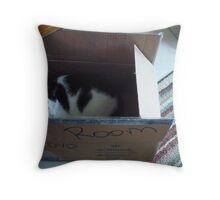 Sleeping in a Cardboard Box! Throw Pillow