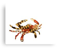 Maryland State Crab - State Pallets Canvas Print