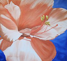 Amaryllis in the Sky by Kim Bender
