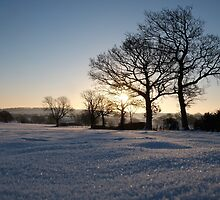 Snow Sunrise by Chris Charlesworth