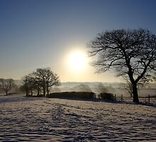 Snow Scene by Chris Charlesworth