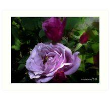 Bee on Roses Art Print