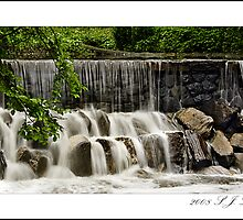 Bronx River, part two by sjluke