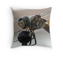 Old man in a dragonfly. Throw Pillow