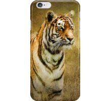 Tiger in the grass iPhone Case/Skin