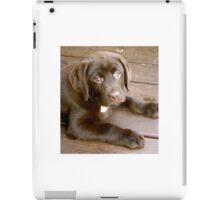 Puppy Face iPad Case/Skin