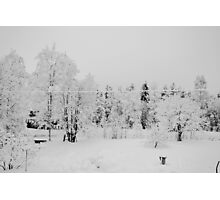 B&W Snow Photographic Print