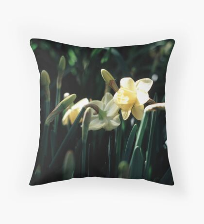 Daffodils 3 Throw Pillow