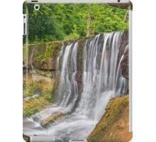 Summer at Anderson Falls iPad Case/Skin