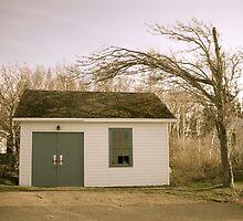 Wind Blown - Antique  by CaptureRadiance