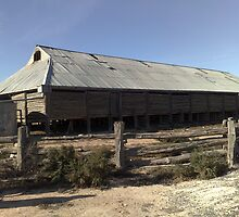 Mungo Shearing Shed by Lesley  Hill